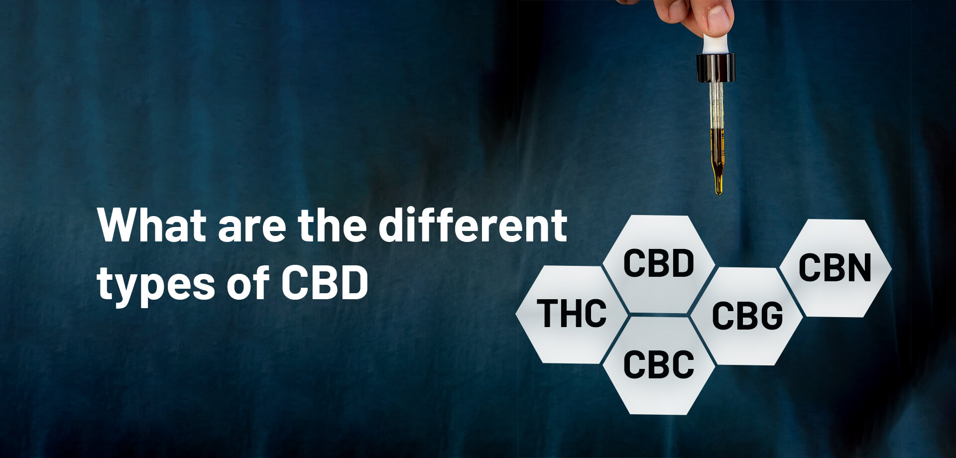 What are the different types of CBD?